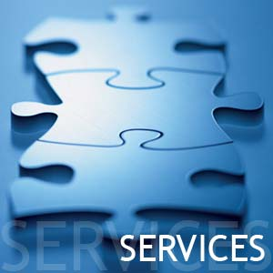 CUSTOMIZED HR SERVICES (1/4)